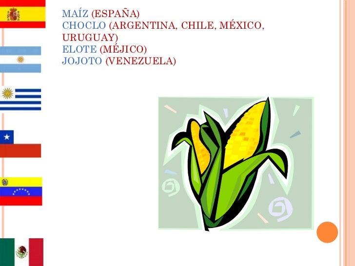 MAÍZ  (ESPAÑA) CHOCLO   (ARGENTINA, CHILE, MÉXICO,   URUGUAY) ELOTE   (MÉJICO) JOJOTO   (VENEZUELA)