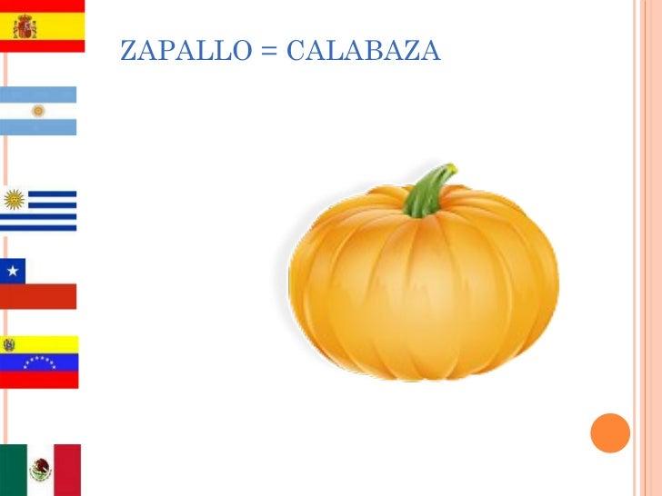 ZAPALLO = CALABAZA