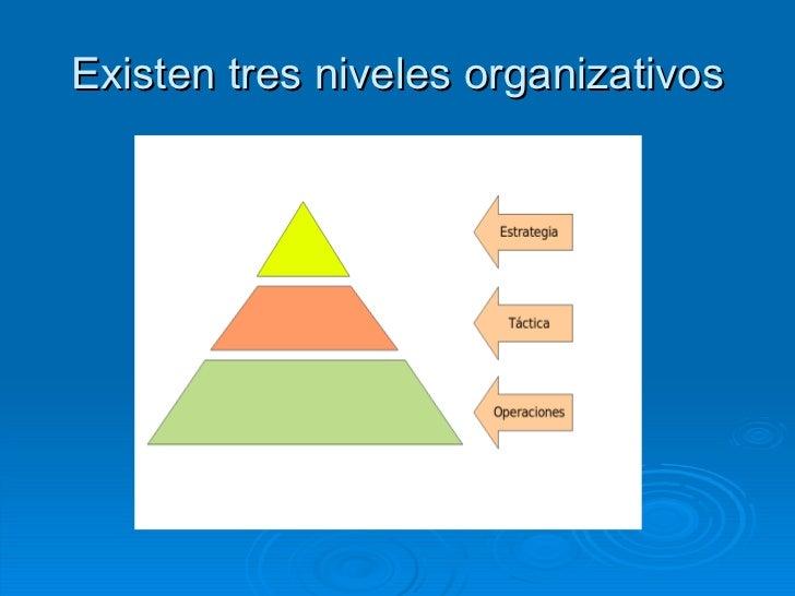 La División Vertical Y Horizontal En La Estructura