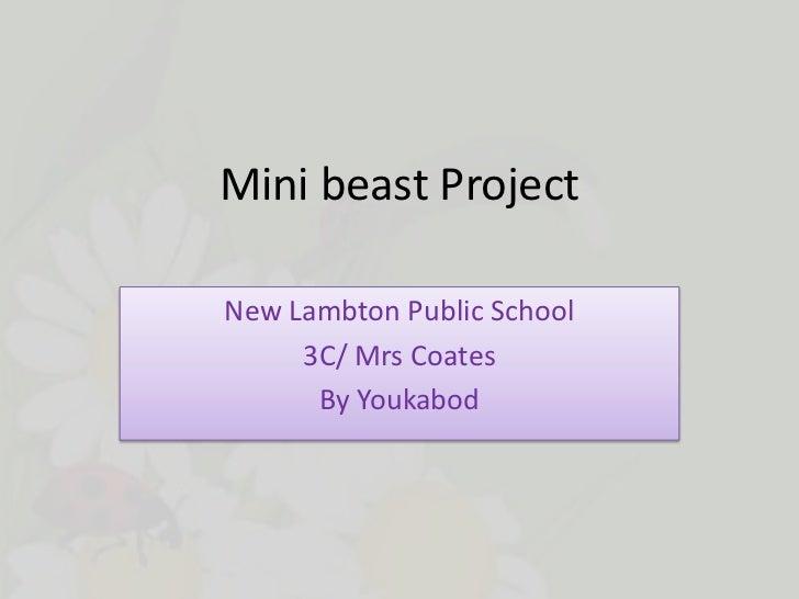 Mini beast ProjectNew Lambton Public School     3C/ Mrs Coates      By Youkabod