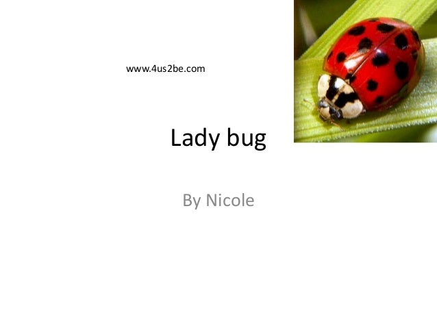 Lady bugBy Nicolewww.4us2be.com