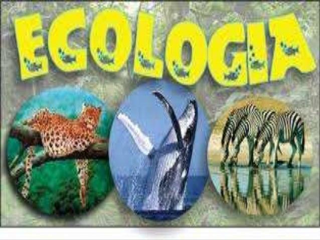  Que es la ecología?  Objeto de estudio ?  Disciplinas de la ecología?  Riqueza, diversidad y biodiversidad?  Ecosist...