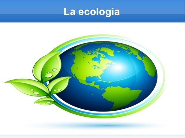 Eco Lopez