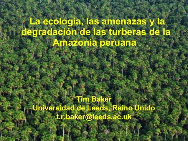 Tim Baker Universidad de Leeds, Reino Unido t.r.baker@leeds.ac.uk La ecología, las amenazas y la degradación de las turber...