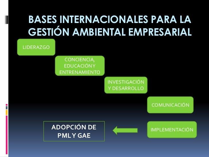 BASES INTERNACIONALES PARA LA GESTIÓN AMBIENTAL EMPRESARIALLIDERAZGO               CONCIENCIA,               EDUCACIÓN Y  ...