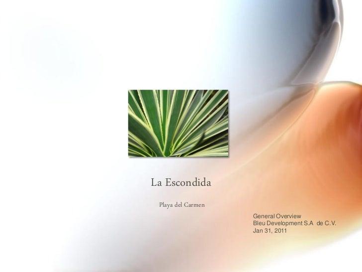 La Escondida Playa del Carmen                    General Overview                    Bleu Development S.A de C.V.         ...