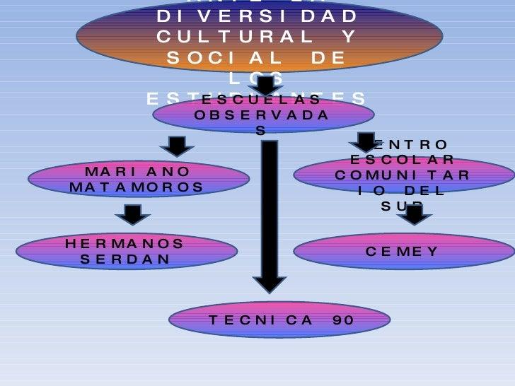 LA ESCUELA ANTE LA DIVERSIDAD CULTURAL Y SOCIAL DE LOS ESTUDIANTES MARIANO MATAMOROS HERMANOS SERDAN CEMEY TECNICA 90 CENT...