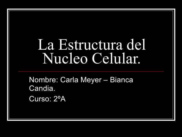 La Estructura del Nucleo Celular. Nombre: Carla Meyer – Bianca Candia. Curso: 2ºA