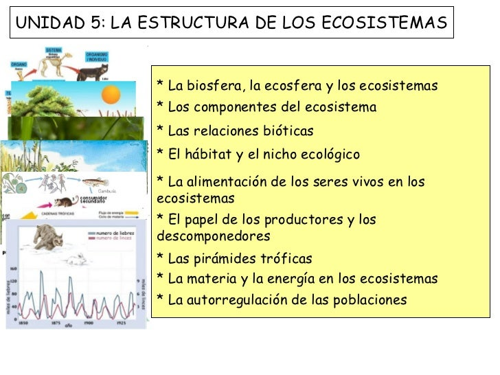 * La biosfera, la ecosfera y los ecosistemas * Los componentes del ecosistema  * Las relaciones bióticas * El hábitat y el...