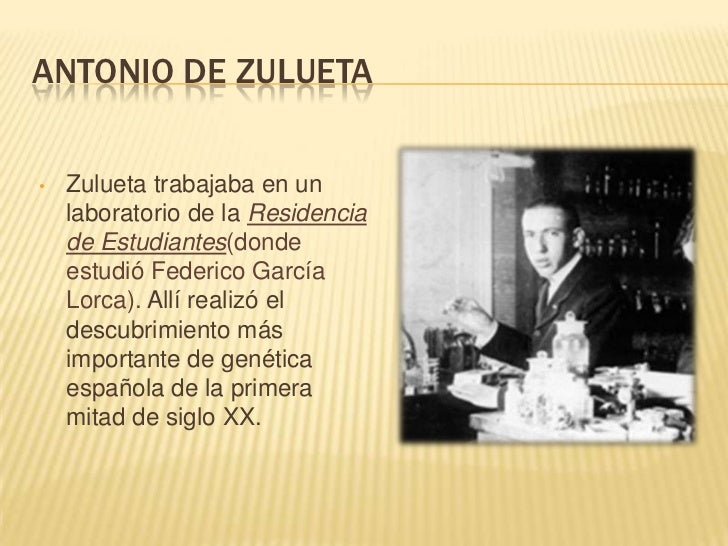 ANTONIO DE ZULUETA•   Zulueta trabajaba en un    laboratorio de la Residencia    de Estudiantes(donde    estudió Federico ...
