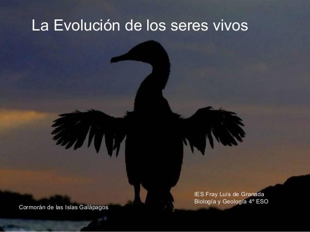 La Evolución de los seres vivos                                  IES Fray Luís de Granada                                 ...