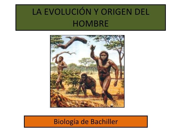 LA EVOLUCIÓN Y ORIGEN DEL HOMBRE Biología de Bachiller