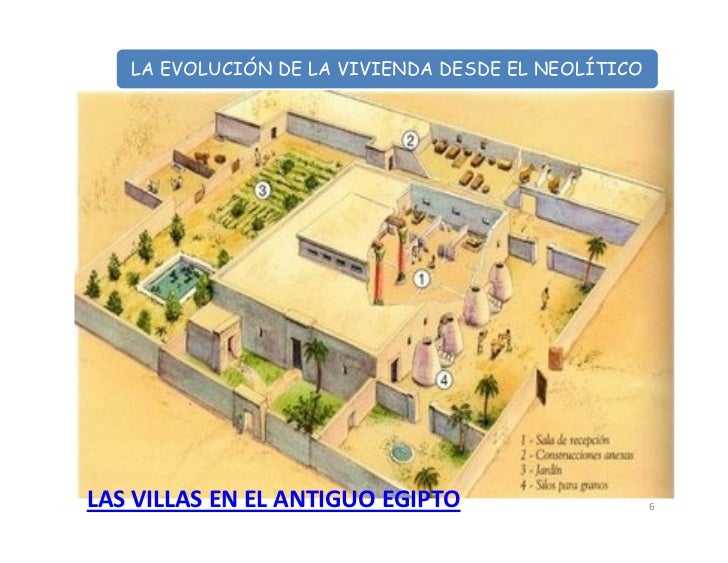 La evolucion de la vivienda for Antropometria de la vivienda
