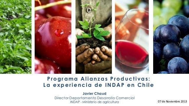 Programa Alianzas Productivas: La experiencia de INDAP en Chile Javier Chaud Director Departamento Desarrollo Comercial IN...