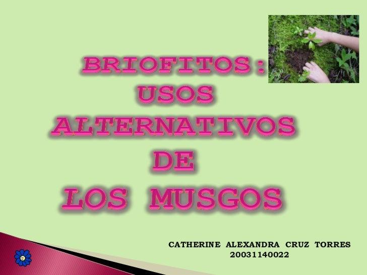 CATHERINE ALEXANDRA CRUZ TORRES           20031140022