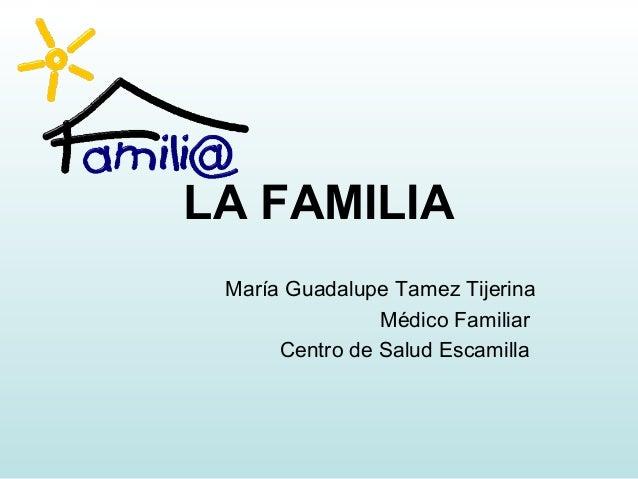 LA FAMILIA María Guadalupe Tamez Tijerina Médico Familiar Centro de Salud Escamilla