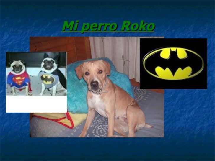 Mi perro Roko