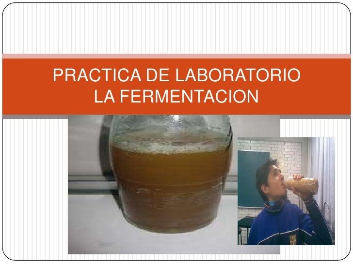 PRACTICA DE LABORATORIOLA FERMENTACION<br />