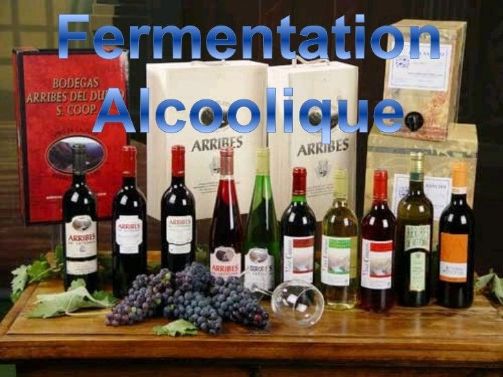La Fermentation Alcoolique Slide 1