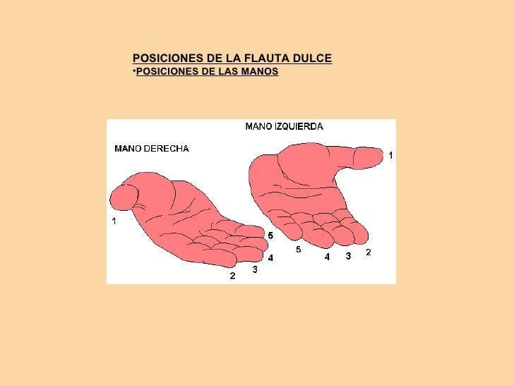 POSICIONES DE LA FLAUTA DULCE •POSICIONES DE LAS MANOS