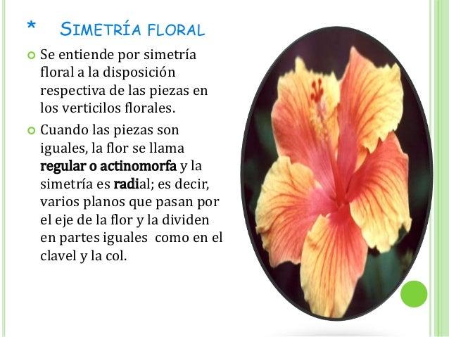 Flor hermafrodita y unisexuality