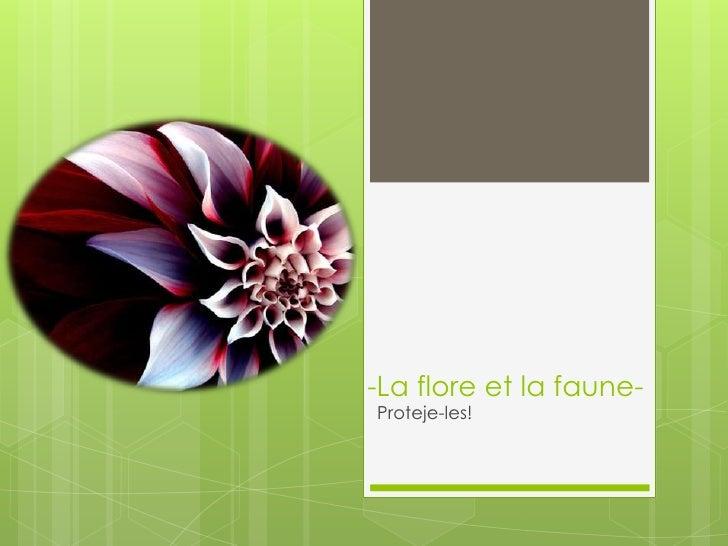 -La flore et la faune- Proteje-les!