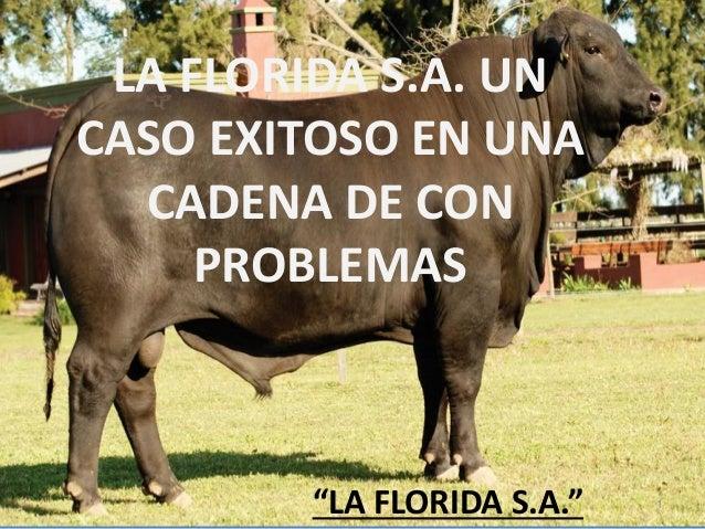 """LA FLORIDA S.A. UN CASO EXITOSO EN UNA CADENA DE CON PROBLEMAS  """"LA FLORIDA S.A.""""  1"""