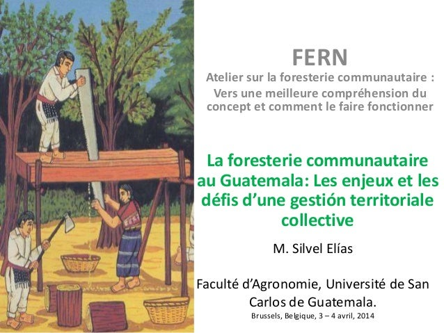 M. Silvel Elías Faculté d'Agronomie, Université de San Carlos de Guatemala. Brussels, Belgique, 3 – 4 avril, 2014 La fores...