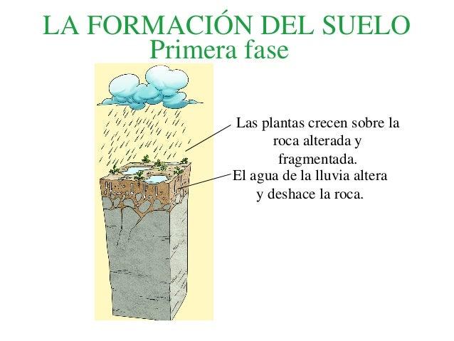 La formaci n del suelo for Formacion de los suelos