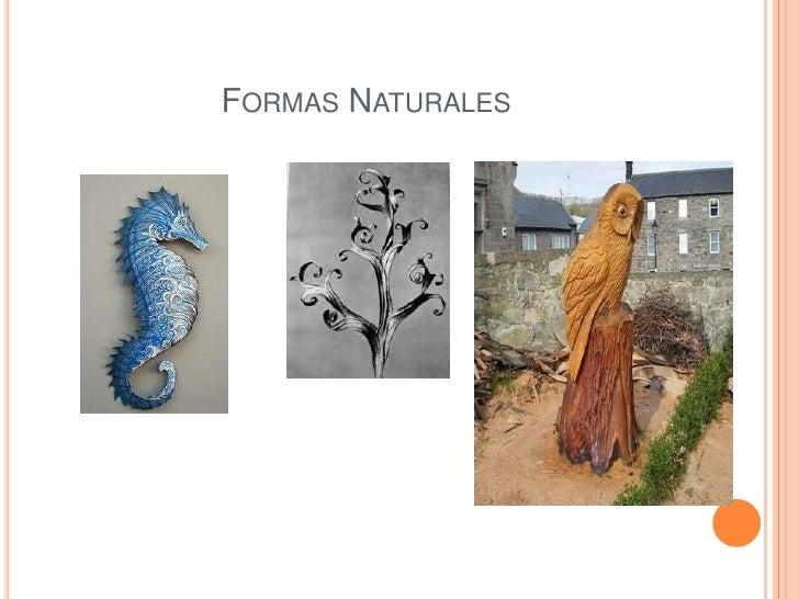 FORMAS NATURALES