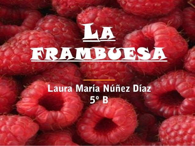 LA FRAMBUESA Laura María Núñez Díaz 5º B