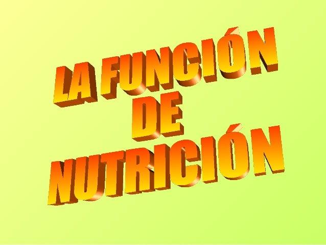 LA FUCIÓN DE NUTRICIÓN                 Se realiza conAPARATO     APARATO        APARATO    APARATODIGESTIVO   DIGESTIVO   ...