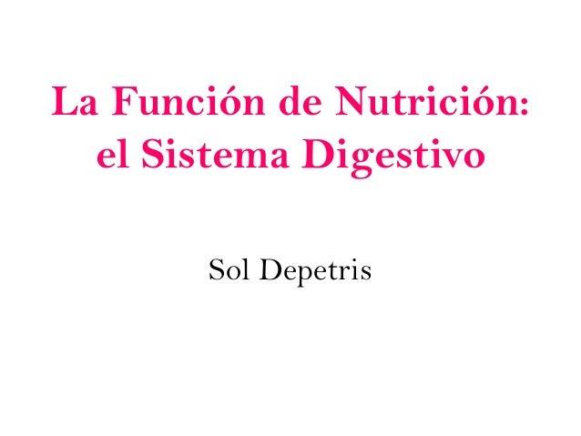 La Función de Nutrición:el Sistema DigestivoSol Depetris