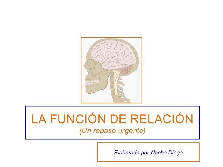 LA FUNCIÓN DE RELACIÓN (Un repaso urgente) Elaborado por Nacho Diego