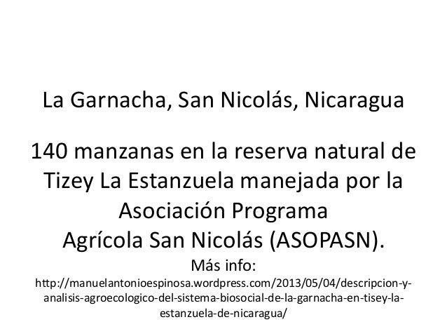 La Garnacha, San Nicolás, Nicaragua140 manzanas en la reserva natural deTizey La Estanzuela manejada por laAsociación Prog...