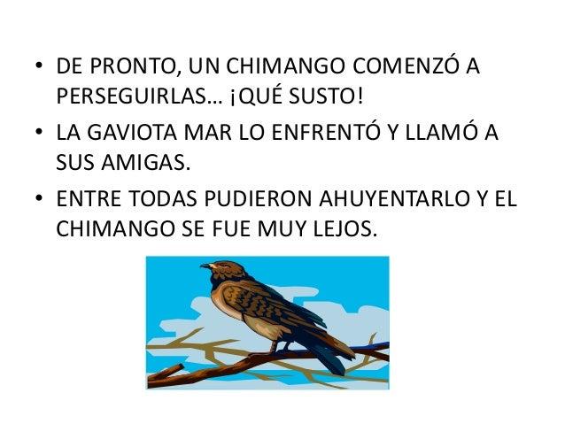 La gaviota mar y la paloma blanca for Ahuyentar palomas del balcon