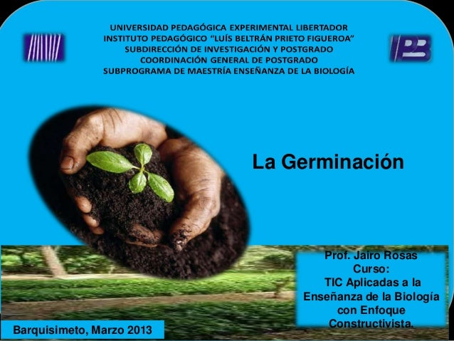 La Germinación                                  Prof. Jairo Rosas                                        Curso:           ...
