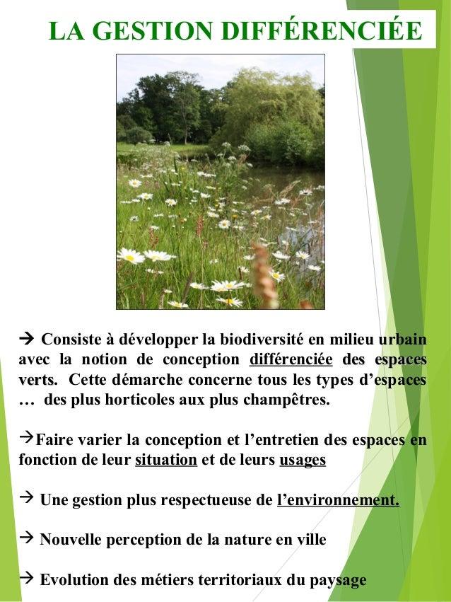 La gestion diff renci e des espaces verts for Les espaces verts urbains