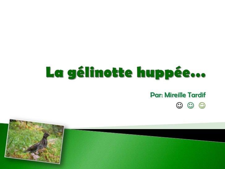 Par: Mireille Tardif<br />    <br />La gélinotte huppée…<br />