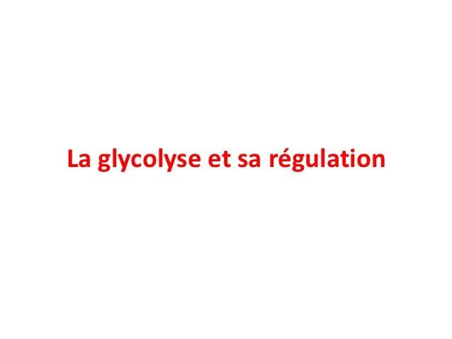 La glycolyse et sa régulation