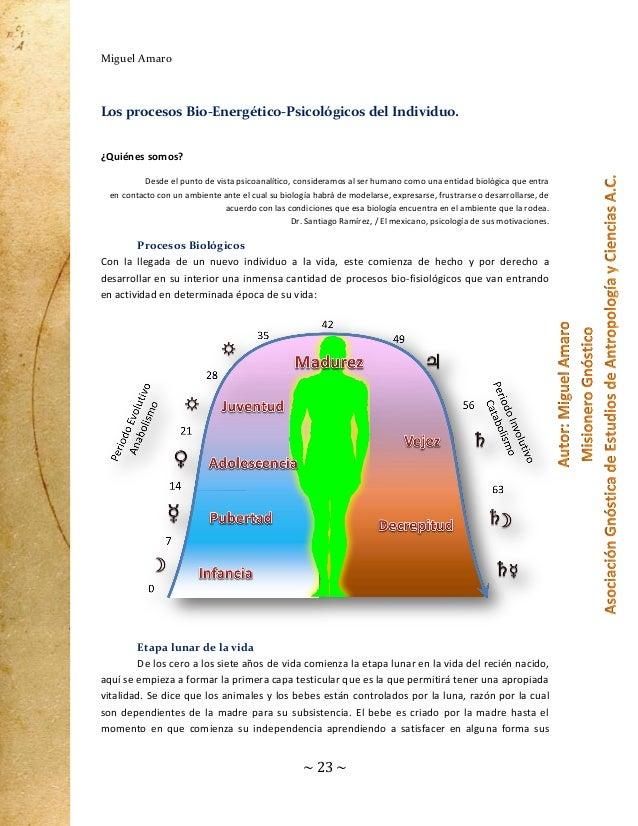 Miguel Amaro  Los procesos Bio-Energético-Psicológicos del Individuo. ¿Quiénes somos? Desde el punto de vista psicoanalíti...