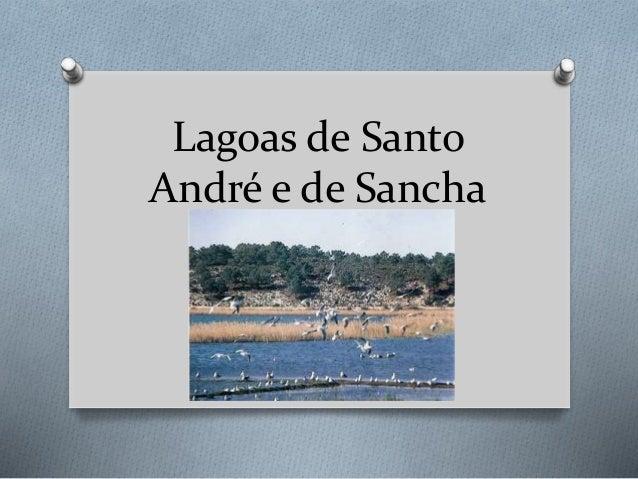 Lagoas de Santo André e de Sancha