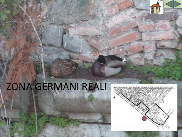 GERMANI REALI