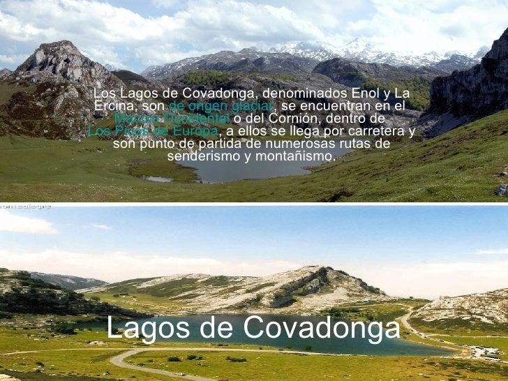 Lagos de Covadonga Los Lagos de Covadonga, denominados Enol y La Ercina, son  de origen glaciar , se encuentran en el  Mac...