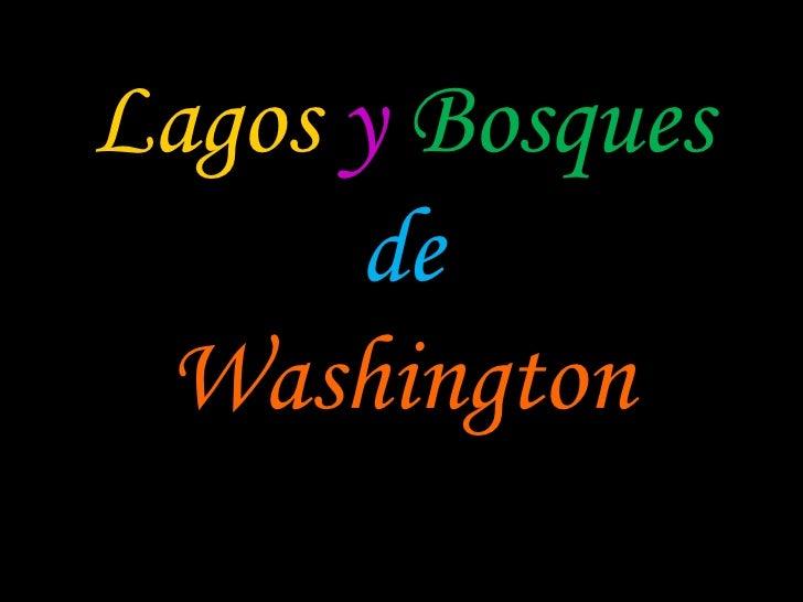 Lagos y Bosques       de  Washington