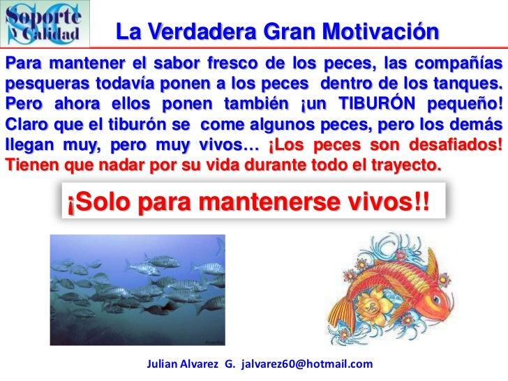 La Verdadera Gran MotivaciónPara mantener el sabor fresco de los peces, las compañíaspesqueras todavía ponen a los peces d...
