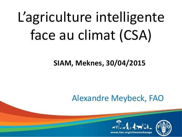 L'agriculture intelligente face au climat (CSA) SIAM, Meknes, 30/04/2015 Alexandre Meybeck, FAO