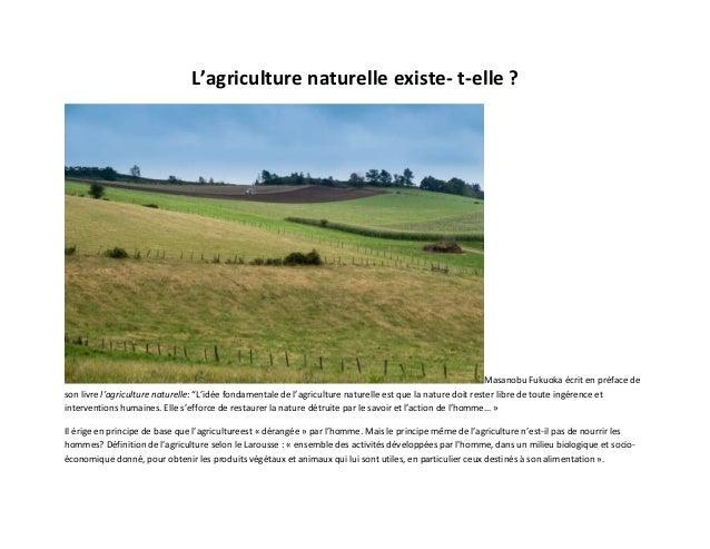 """L'agriculture naturelle existe- t-elle ?  Masanobu Fukuoka écrit en préface de son livre l'agriculture naturelle: """"L'idée ..."""