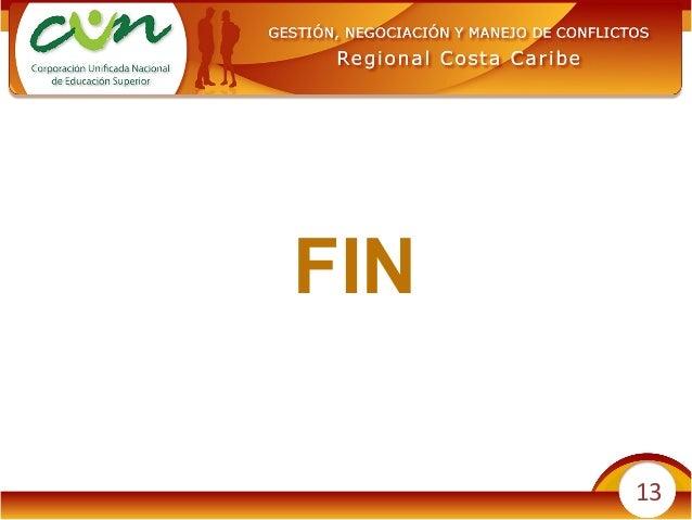 13 FIN