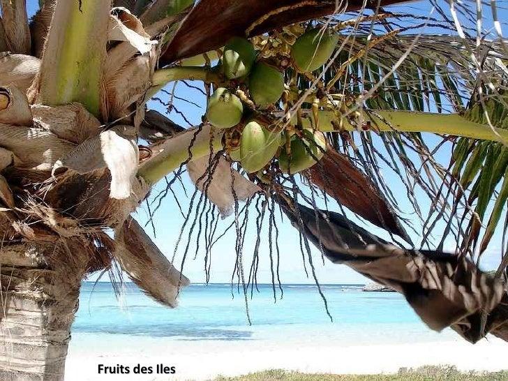 Fruits des Iles